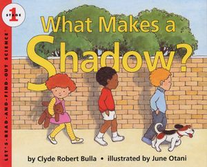 What Makes a Shadow? book image