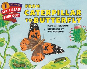 From Caterpillar to Butterfly book image