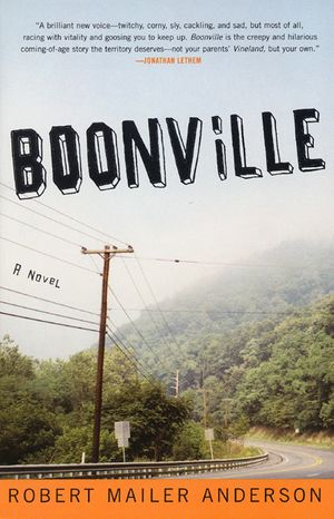 Boonville book image