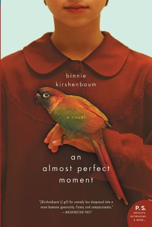 Almost Perfect Moment, An book image