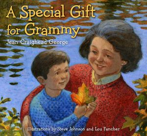A Special Gift for Grammy book image