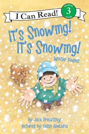 It's Snowing! It's Snowing! book image