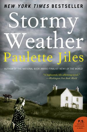 Stormy Weather book image