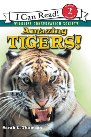 Amazing Tigers! book image