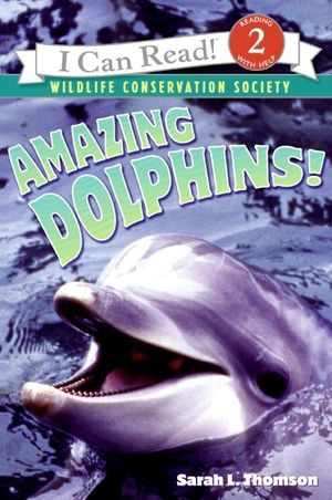 Amazing Dolphins! book image