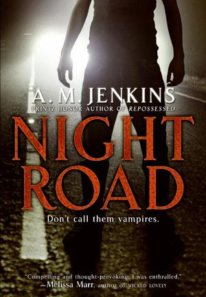 Night Road book image