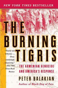 the-burning-tigris