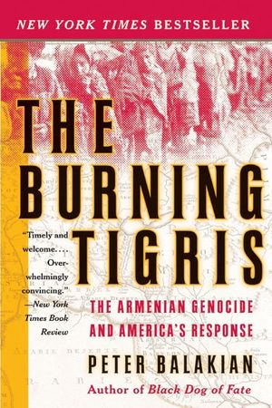 The Burning Tigris book image
