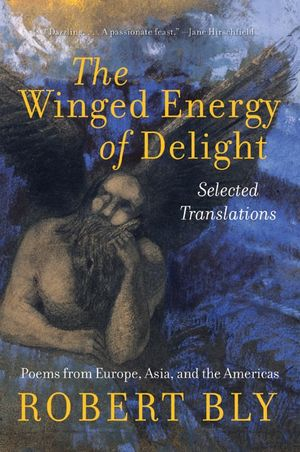The Winged Energy of Delight book image