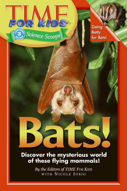 Time For Kids: Bats! - Editors of TIME For Kids - Paperback