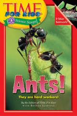 Time For Kids: Ants!