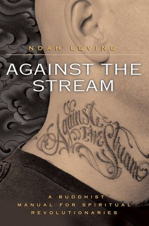 Against the Stream book image