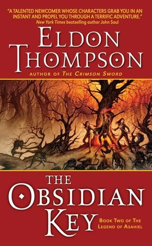 The Obsidian Key book image