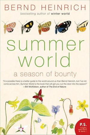 Summer World book image