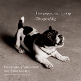 I Am Puppy, Hear Me Yap