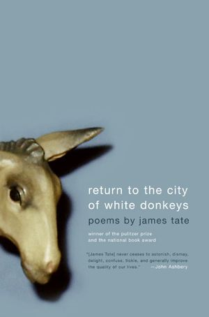 Return to the City of White Donkeys book image