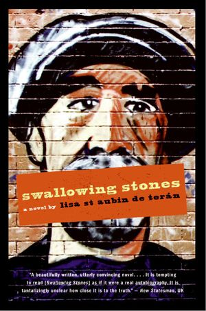 Swallowing Stones book image