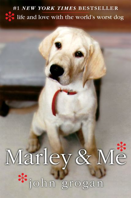 marley and me summary sparknotes