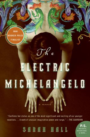 The Electric Michelangelo book image
