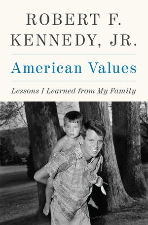 American Values book image