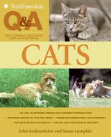 Smithsonian Q & A: Cats