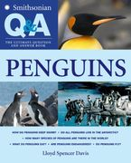 smithsonian-q-and-a-penguins