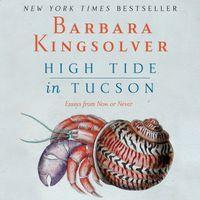 high-tide-in-tucson