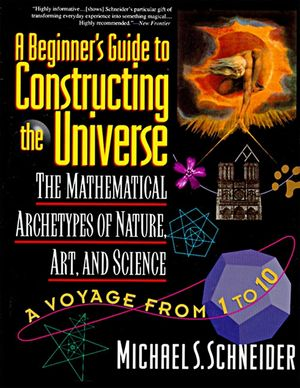 The Beginner's Guide to Constructing the Universe book image