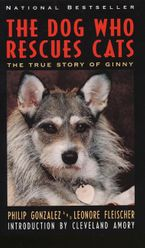 The Dog Who Rescues Cats Paperback  by Philip Gonzalez