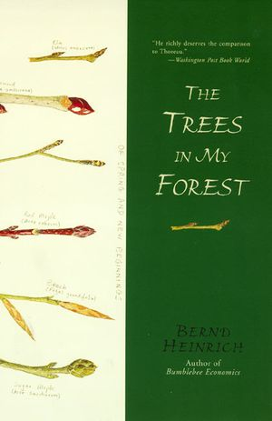 The Trees in My Forest book image