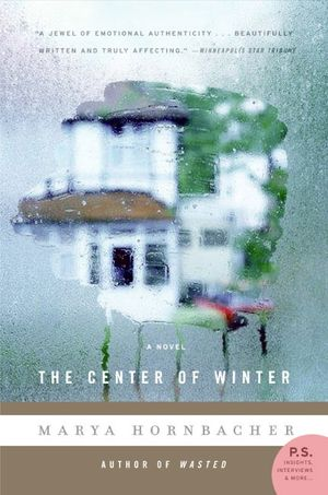 The Center of Winter book image