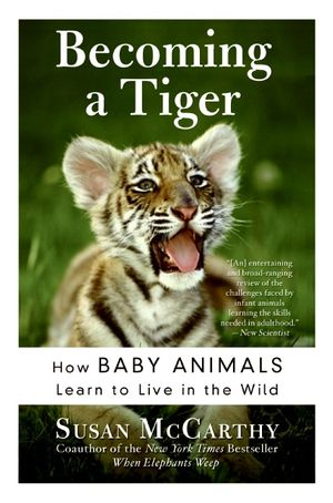 Becoming a Tiger book image