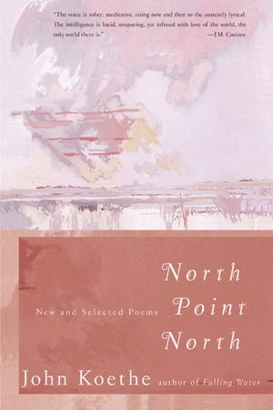 North Point North book image
