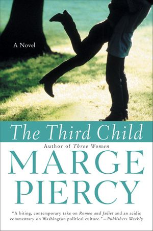The Third Child book image