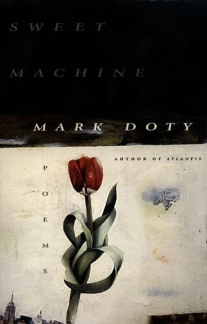 Sweet Machine book image