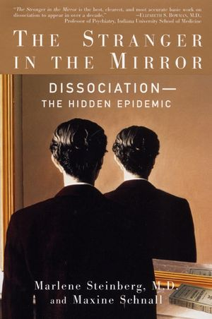 The Stranger In The Mirror book image