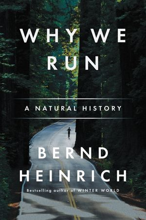 Why We Run book image
