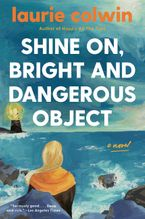 Shine On, Bright and Dangerous Object Paperback  by Laurie Colwin