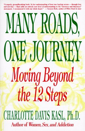 Many Roads One Journey book image