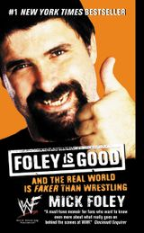 Foley is Good