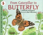 from-caterpillar-to-butterfly-big-book
