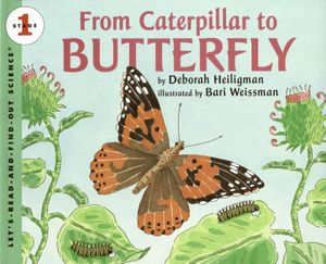 From Caterpillar to Butterfly Big Book book image
