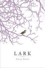 Lark Hardcover  by Tracey Porter