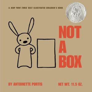Not a Box book image