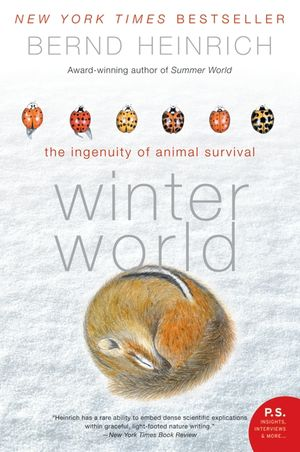 Winter World book image