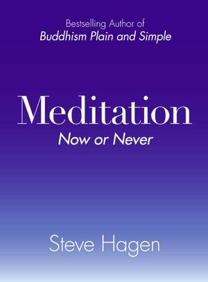 Meditation Now or Never book image