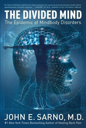 The Divided Mind book image