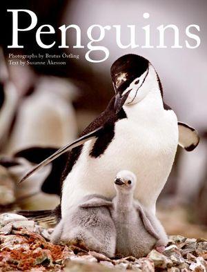 Penguins book image