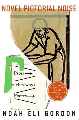 Novel Pictorial Noise