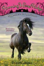 running-horse-ridge-1-sapphire-new-horizons